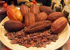 Спрос на какао всегда высок