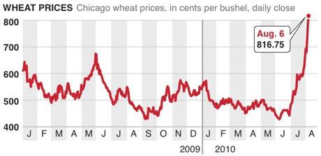 рост цен на пшеницу