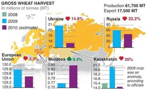 прогноз урожаев пшеницы